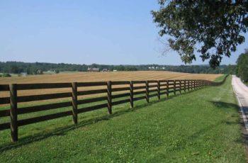 O Que é Gestão da Propriedade Rural? Entenda seu funcionamento!