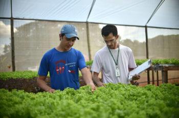 Pós-Graduação Em Administração Rural e Agronegócio — Como Funciona?
