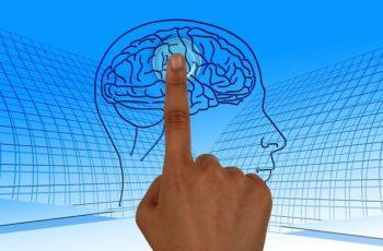 O Que Se Aprende Na Pós Em Neuroeducação EAD?